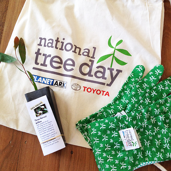 Take Action: National Tree Day