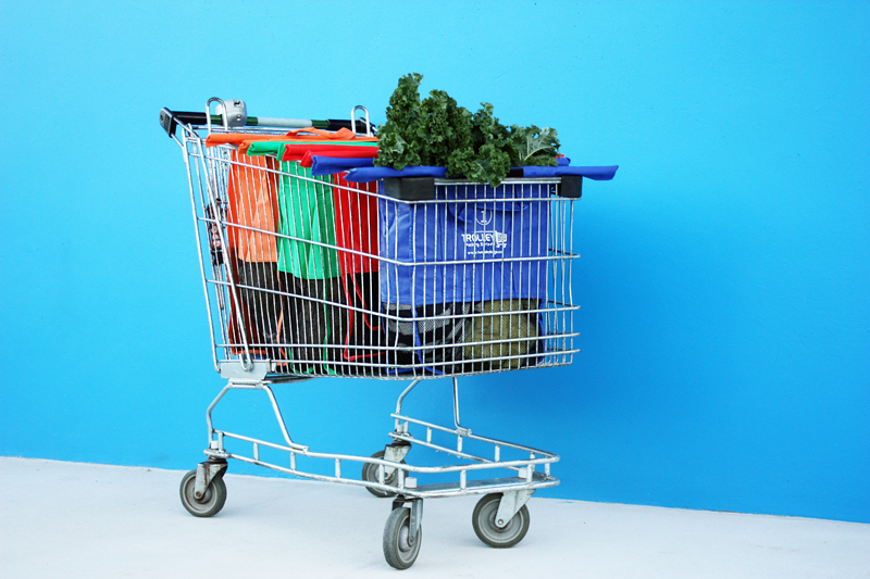trolley_bags_1