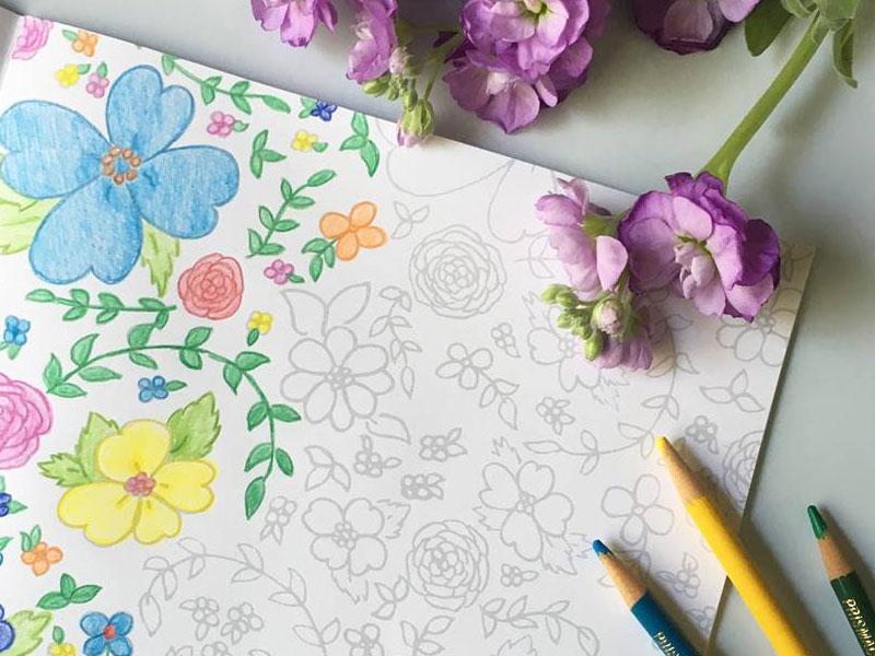 flora_stationary_3