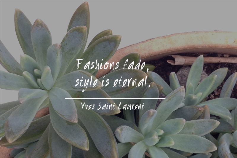 Is Sustainable Fashion an Oxymoron?
